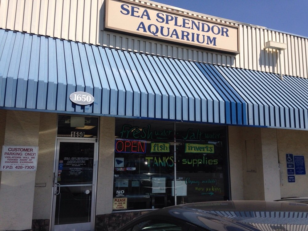 Local fish and aquarium stores in ca for Fishing stores near me