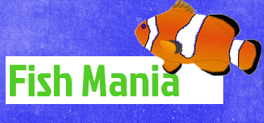 Fish mania chattanooga tn for Fish stores around me
