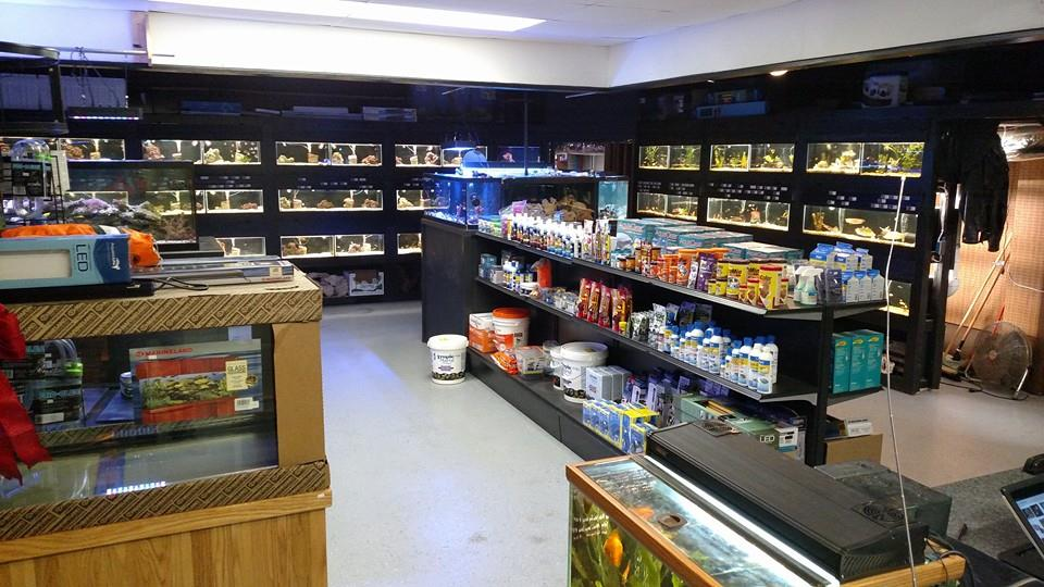 Local fish and aquarium stores in ny for Exotic fish store near me