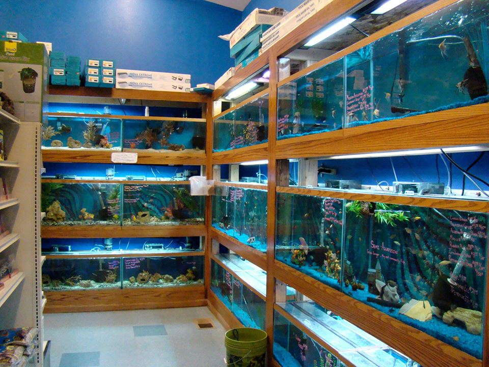 Local fish and aquarium stores in wy for Fish stores around me