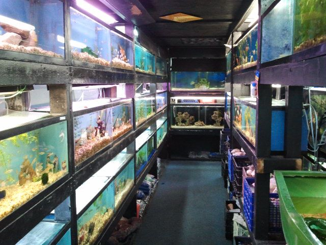 aquarium town city apopka fl brief description sealife aquarium ...