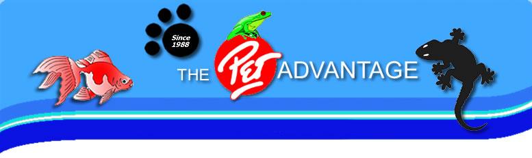 The Pet Advantage South Burlington Vt