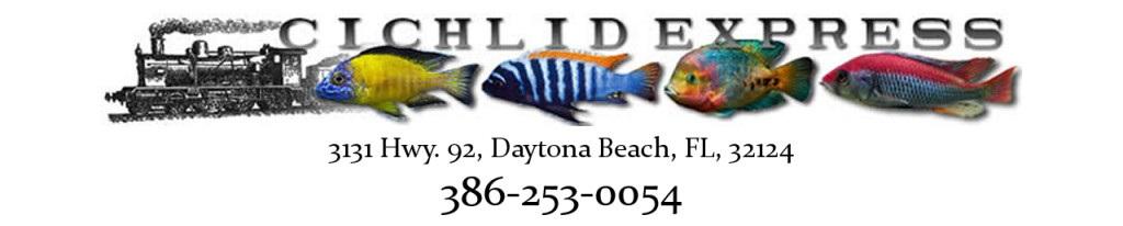 Daytona Aquarium Daytona Beach Fl