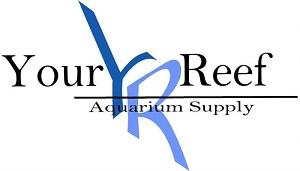 Your reef aquarium roseville ca for Fish tank supplies near me