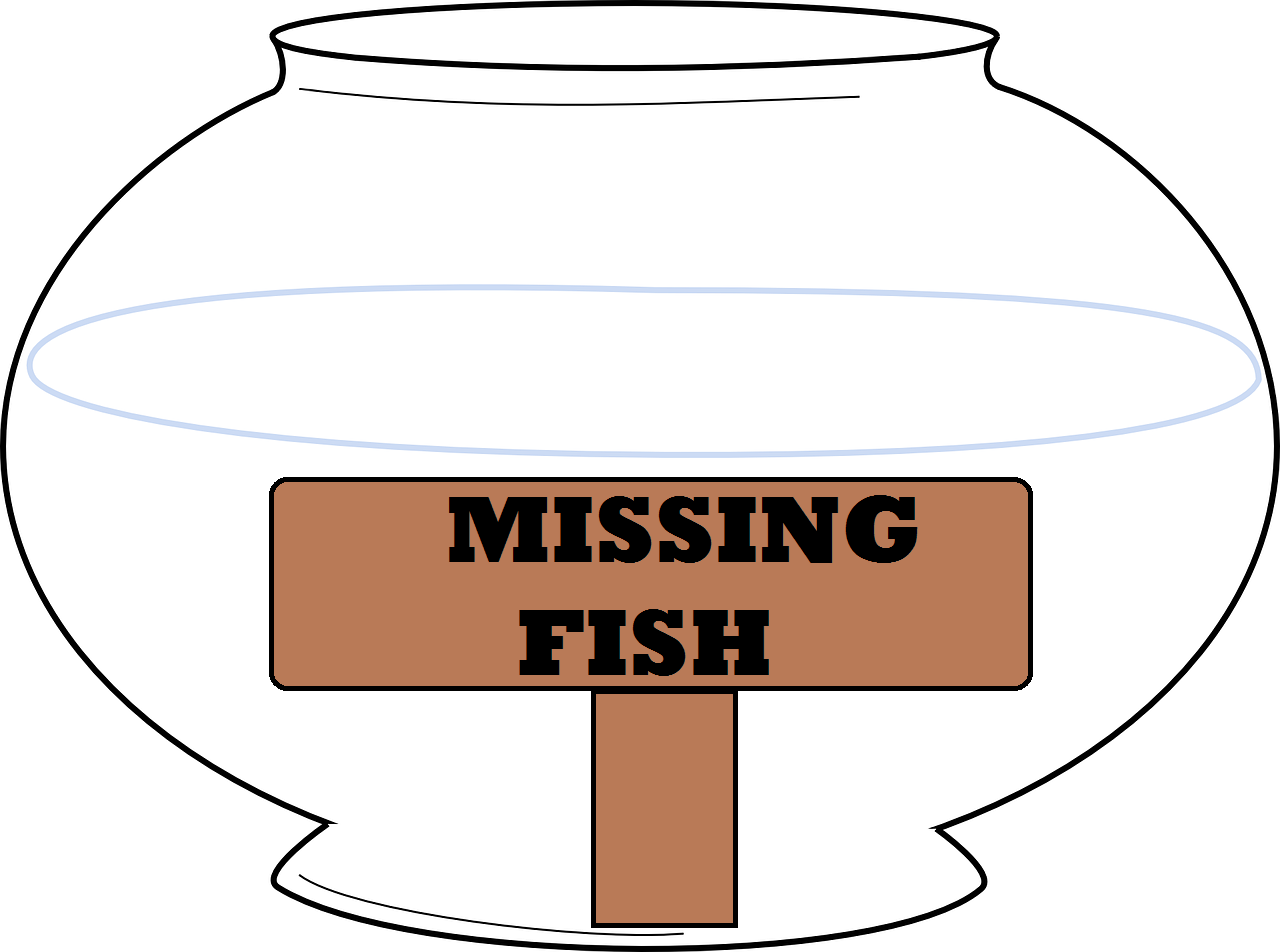 Freshwater fish kansas city - Town City Salina Ks Brief Description Pet Life Stocks And Maintains A Large Inventory Of Fresh Water Fish Goldfish Tetras Mol View More Information